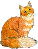 Orange Cat by Fayolka