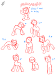 Pony Positions I Might Use by Universal-Tiger