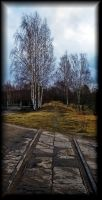 An old railway... by Yancis