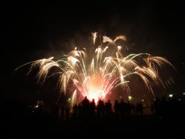Relay for Life Fireworks 2 by BrendanR85