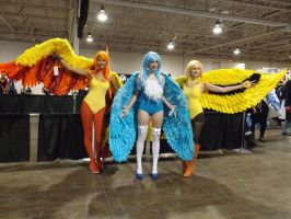 Anime North 2013 - Moltres Articuno and Zapdos by IronFall