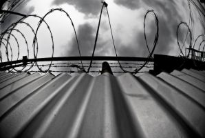 BARB WIRE FENCE by demato8143