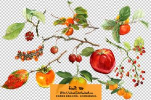 fruits_mikakjj_ColorPalace by mikakjj
