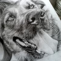 Comission drawing - Dog by NLITO