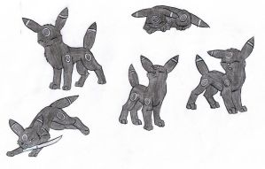 Umbreon named Gin by Tetsumon