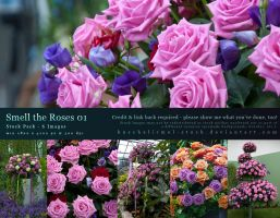 Smell the Roses 01 by kuschelirmel-stock