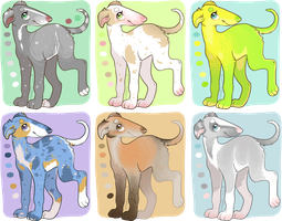 Borzoi Pups Batch 1 Adopts Points and USD 5/6 OPEN by OToTheZone