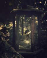 Locked within the lantern by Dahud