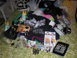My Haul from Anime Crossroads 2011 by snowcloud8