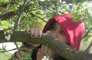 Little Red Riding Hood by GraceyLaceyPaceyWacy