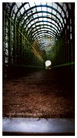 Tunnel of Fate by Foxhawk95