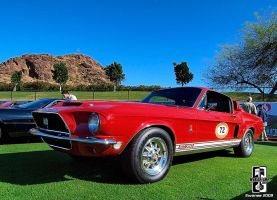 Shelby GT350 by Swanee3