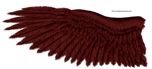 Red Eagle Wing by K1ku-Stock