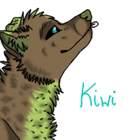 Kiwi avatar by Wolf-dark-moon