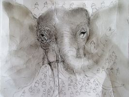 Elephant recycled as Lin Wang by DVanDyk
