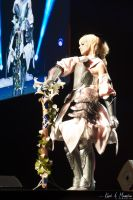 JE2012 - ECG2012 - France ~ Fate/UC~ by Nawamane