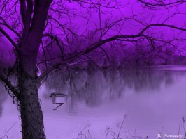 In The Mist Of Purple by UvGirl