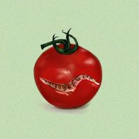 The Perfectly Imperfect Tomato by mreach