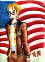 America form aph by OhioErieCanalGirl