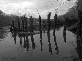 Old Barge Ruins by PaddleGallery