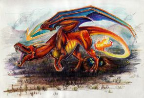 Charizard by Amadoodles