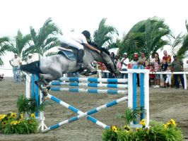 Jump Show 2008 5 by BlackAngel-Diana