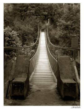 Pont by Christelle