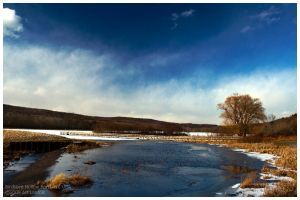 frozen hollow pond by Echo1034
