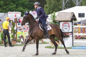 3DE Show Jumping Phase Stock 122 Shaking Head by LuDa-Stock