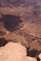 Grand Canyon by dl-p