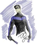 Nightwing by TheoDJ