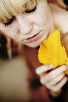 yellow_leaf. by HopTuNaa