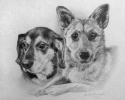 Dogs 1 by ClearlyDarkness