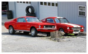 Two Red Mustangs by TheMan268