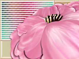 Candy Pink Flower by omagrandmother