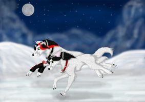 Under The Stars by Wolfs-echo by ArtOfThePawAndFang
