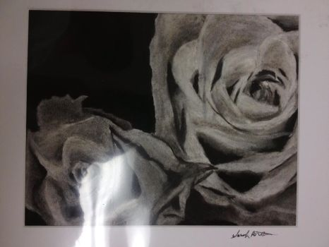 Charcoal Roses by sarahattalla