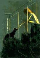 The stray. by PascalCampion