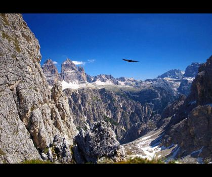 Alpine flight by CogitoErgoRum