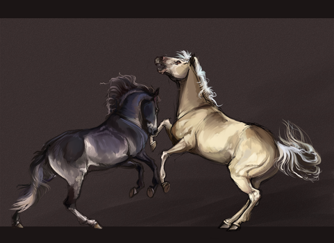 [Horses].:Sketch Com: Fight:. by The-Day-of-Shadow