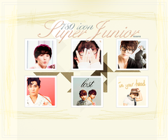 780 Icons Super Junior by Rosba18