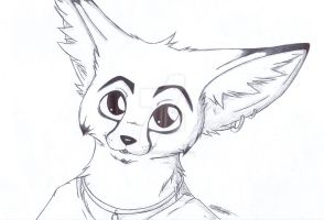 Fennec by CookieFennec
