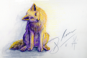 Wolf Cub by Toothsmile
