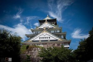 Osaka Castle, Osaka Japan by tdcwillz