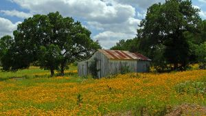 Texas Hill Country 3 by TexasCrazyHeart