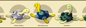 PokemonSubspecies: Shuckle by CoolPikachu29