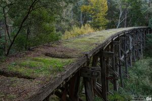 Trestle Bridge in Country Victoria by djzontheball