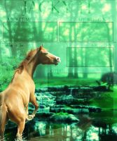 Jacky H by HoofBeat-Graphics