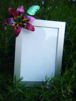 Recycled Pop Can Photo Frame by Christine-Eige