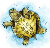 Turtle by Izumigee